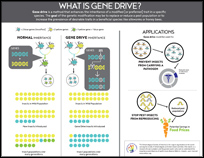 What is Gene Drive?