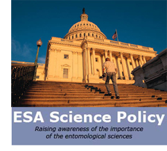 ESA Science policy